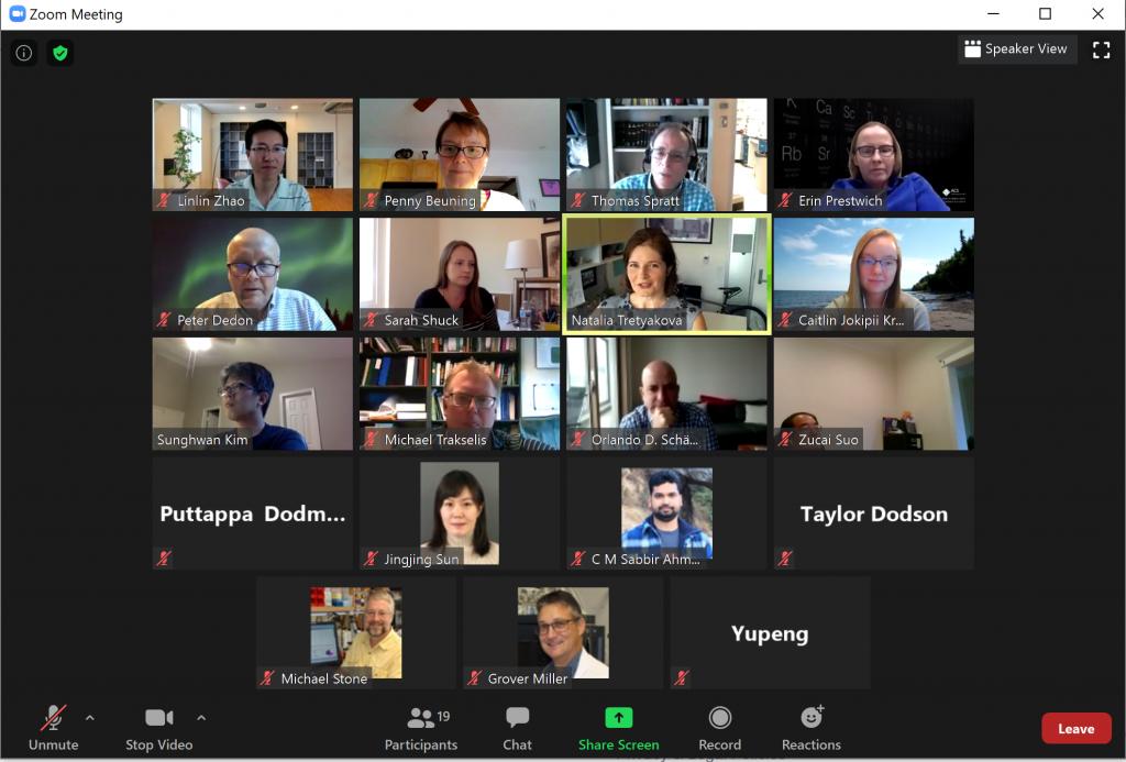 Screenshot of final zoom networking event